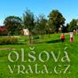 Olsova Vrata ikonka