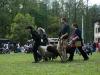 kozodoj-2010-foto-16